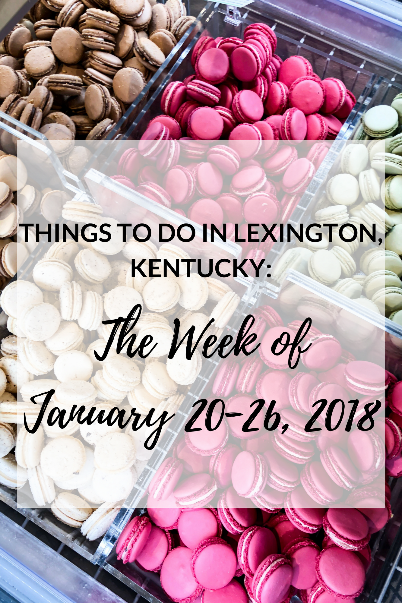 things to do in lexington kentucky january