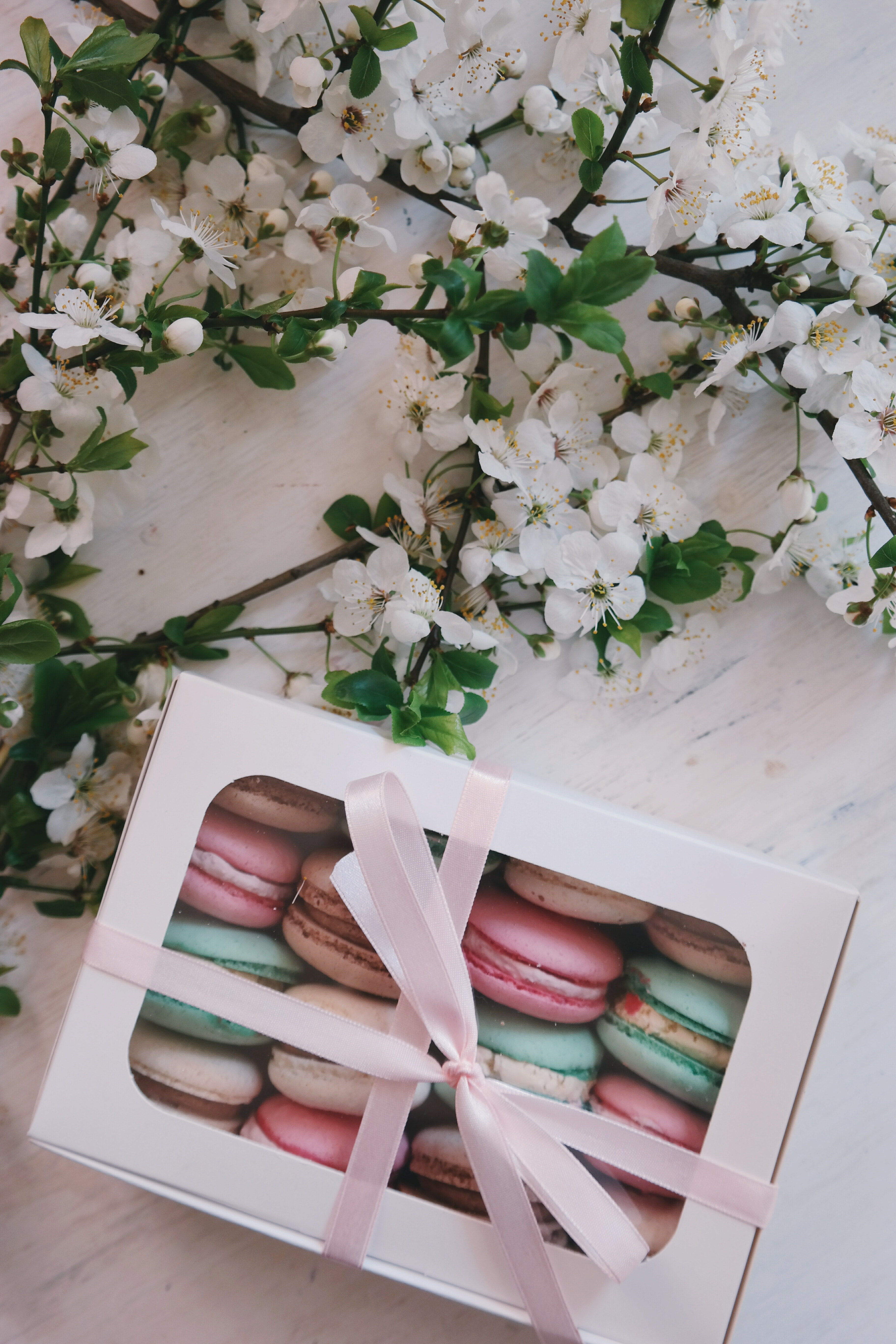 Colorful macarons in a box with a ribbon with flowers