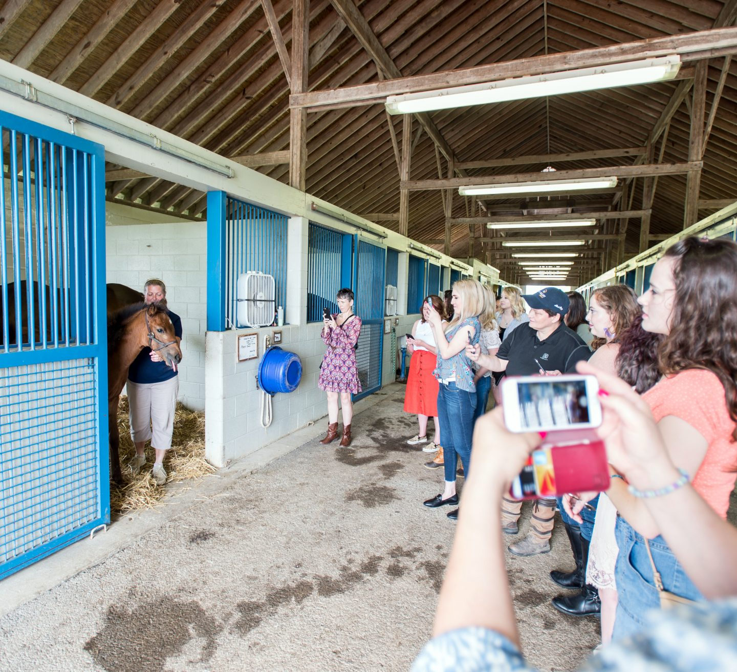 A group of women in a barn taking a picture of a horse