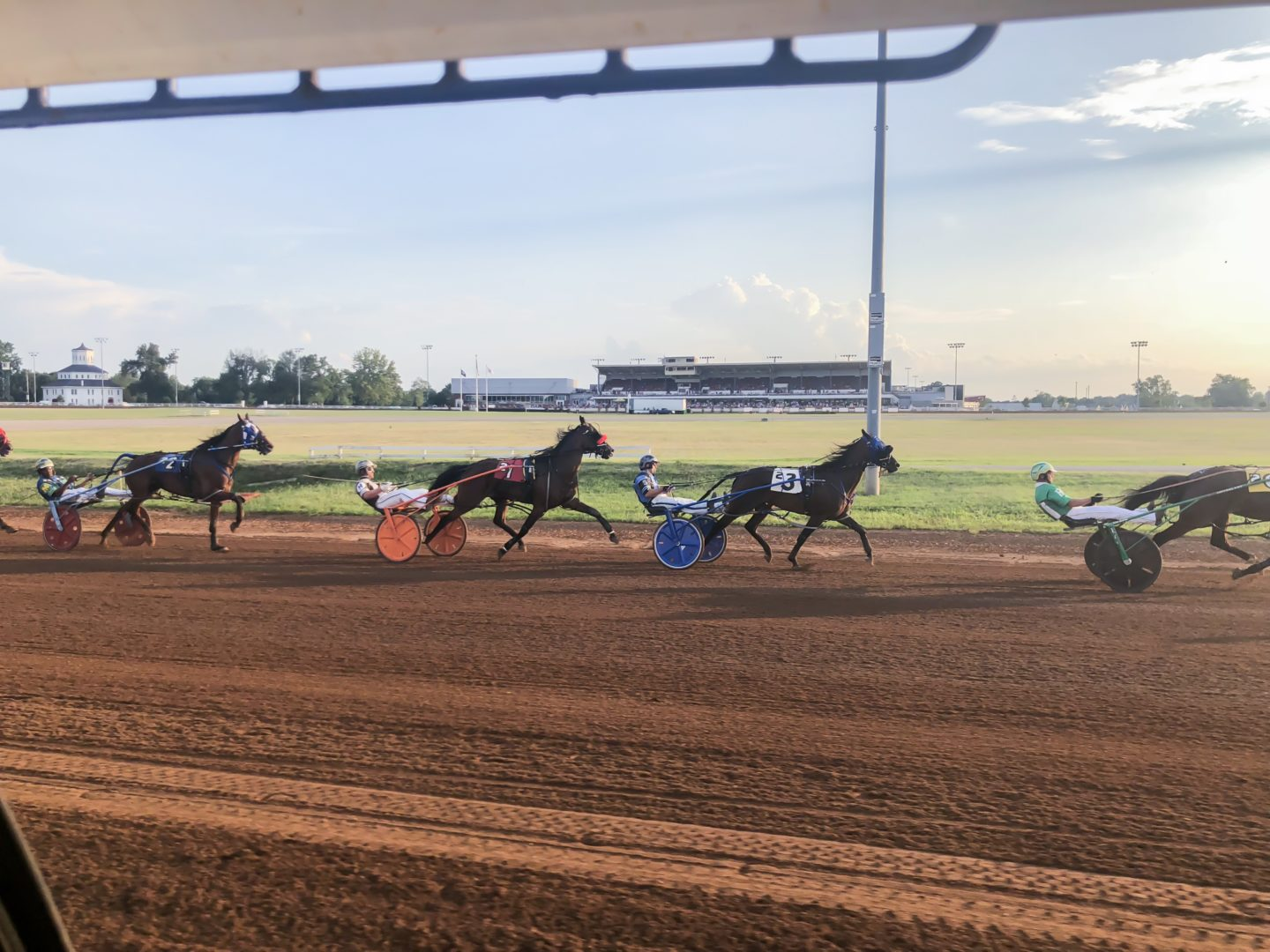 harness racing at red mile race track