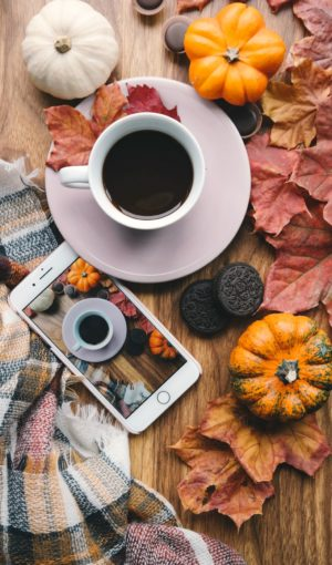 fall leaves flatlay